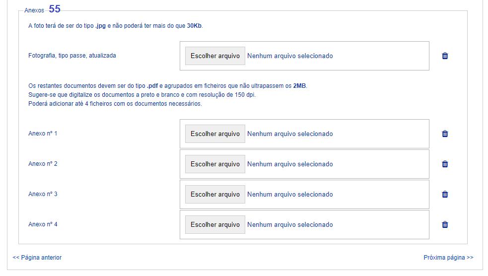 tela para inserção da documentação e anexos visto d7 portugal